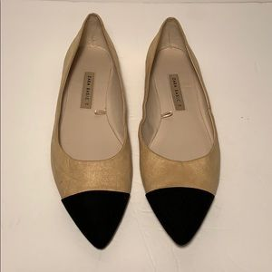 Zara Two Tone Pointed Flats